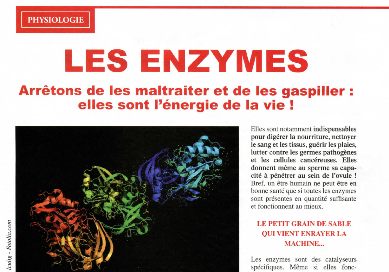 Les enzymes